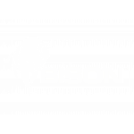 Bison Group Limited